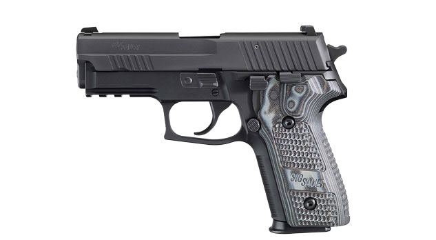 "SIG P229 E2 9MM 3.9"" 15RD BLK GRY NS"